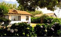 Die liebevoll eingerichteten  Ferienhäuser Casa Mobile und Casa Betty sind getrennt durch eine dichte Hortensienhecke und befinden sich auf einem etwa 1000 qm großen Grundstück in Hanglage. /Sao Miguel-Azoren