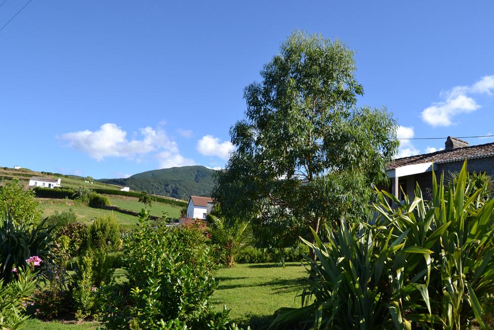 Casa-da-Fonte,-the-garden.jpg