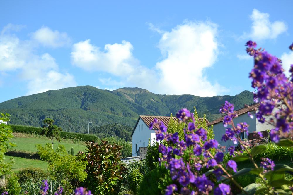 Casa-da-Fonte-mountain-view.jpg