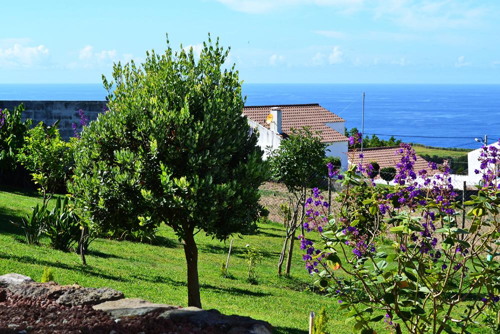 Casa-da-Talha,-the-garden.jpg