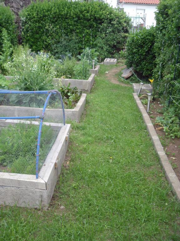 Garten.1.jpg
