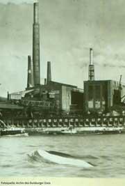 der Wal vor der Duisburger Industriekulisse, Foto aus dem Archiv des Duisburger Zoos