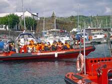 Ausritt zur Wal-Delfintour ab Horta/Insel Faial, Azoren