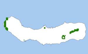 Das Verbreitungsgebiet des Azoren-Abendsegler (Nyctalus azoreum) auf Sao Miguel/Azoren.