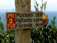 Foto:Pierluigi Bragaglia, Argonauta, Faja Grande, Flores/Azoren